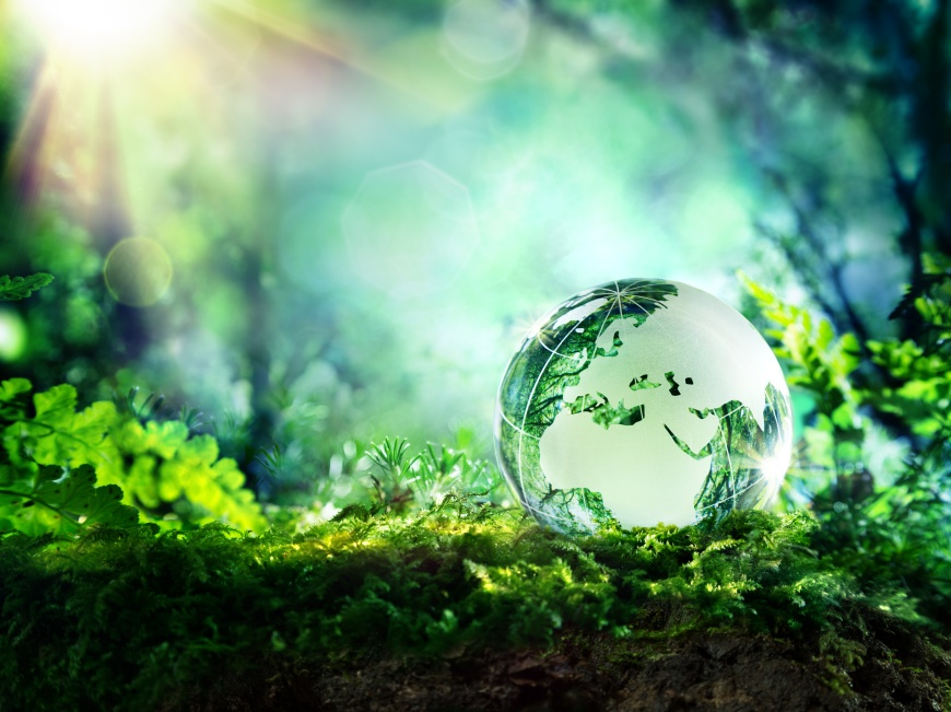 globe on moss in a forest - Europe - environment concept