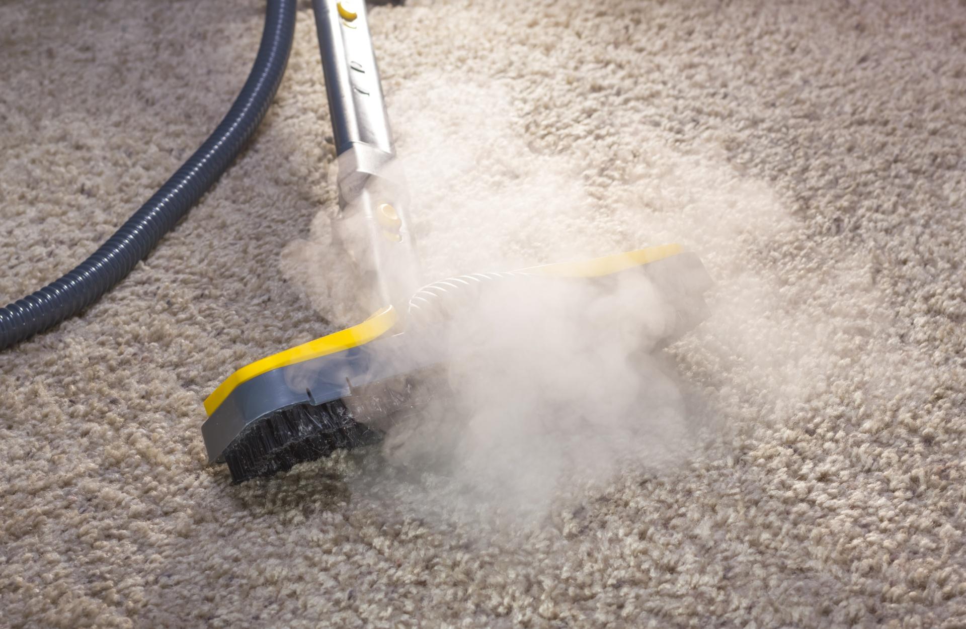Using dry steam cleaner to sanitize floor carpet.